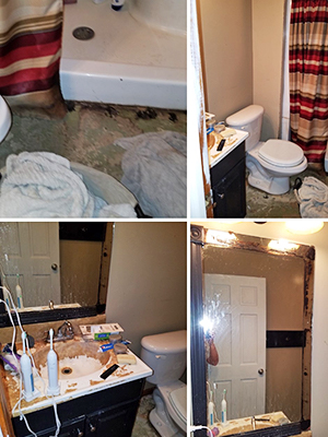 Simply Restyled Interiors Bathroom Staging