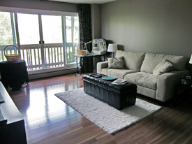 Home Stager Before Photo